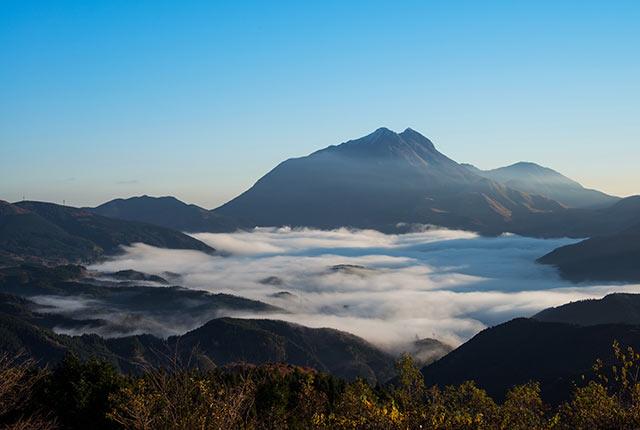 由布岳と朝霧を一望