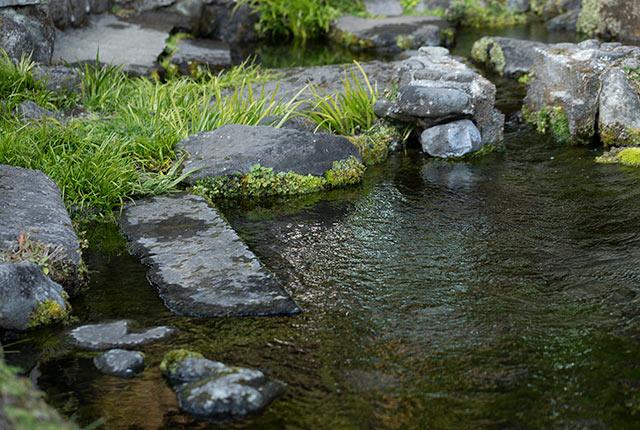 湧水がたまった池