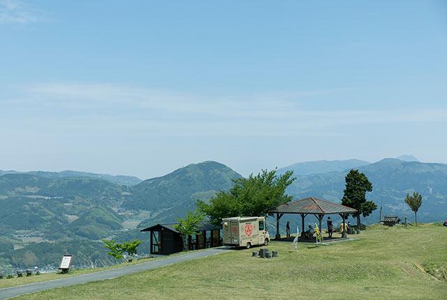 芝生が広がる伐株山の頂上