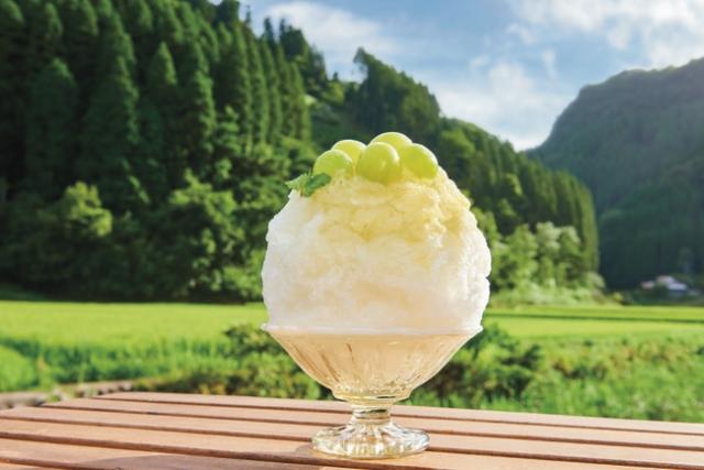 蛍茶園のシャインマスカット氷