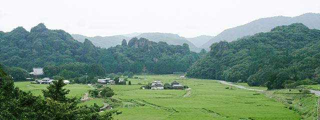 水田の景観